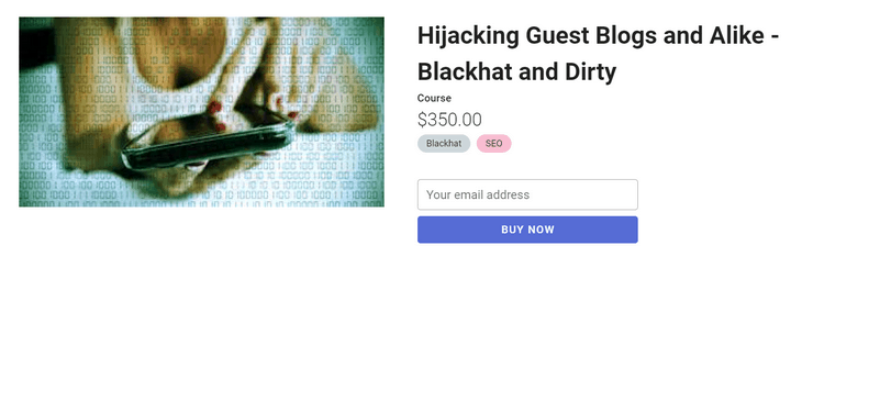 Holly Starks - Hijacking Guest Blogs and Alike-Blackhat and Dirty